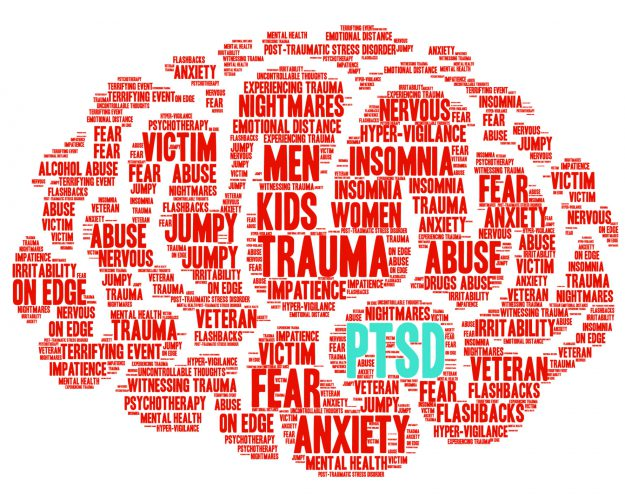Being Trauma Informed - A two lesson course on what happens to us and the effects on our brain and behavior.