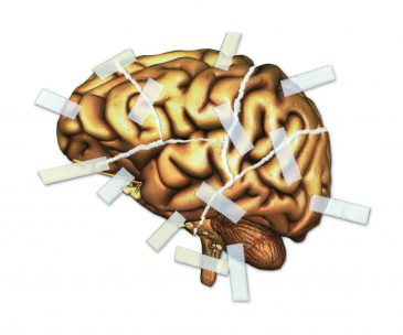 Brain Injury and Repair